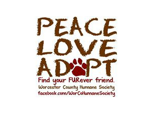 Humane Society of Worcester County Logo